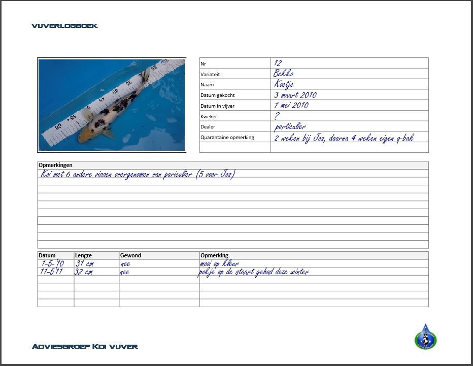 logboek Adviesgroep Koi en vijver - pagina koi