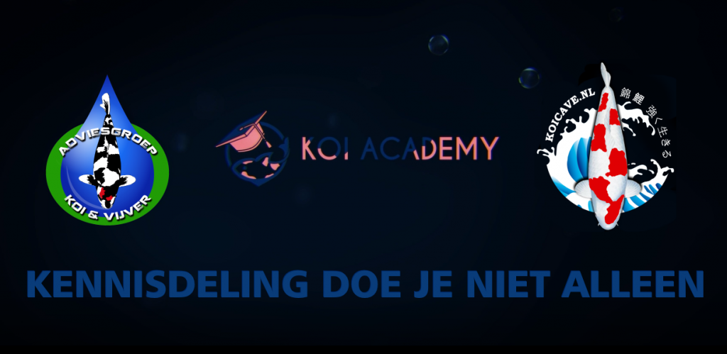 Kennis delen doe je niet alleen. Koi Academy, KoiCave en Adviesgroep Koi en vijver slaan handen in een.