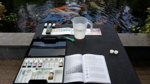 Adviesgroep Koi en vijver - Controle van water is noodzakelijk om juiste hoeveelheid voer goed af te stemmen